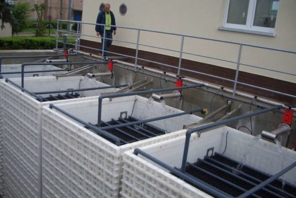 BioKube at vegetable factory Poland - 4